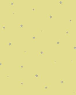 Housse de coussin de sol Sous les étoiles de Raphaël